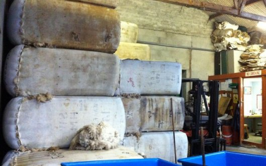 Shetland's 2013 wool clip begins to arrive at the Woolbroker's (Jamieson and Smith) to be sorted.
