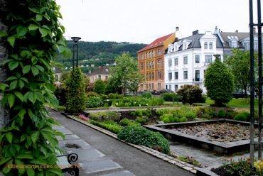 University area.